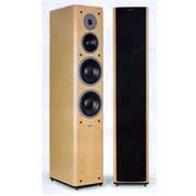 Dynaudio Focus 380 Maple