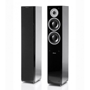 Dynaudio Focus 260 Black Ash